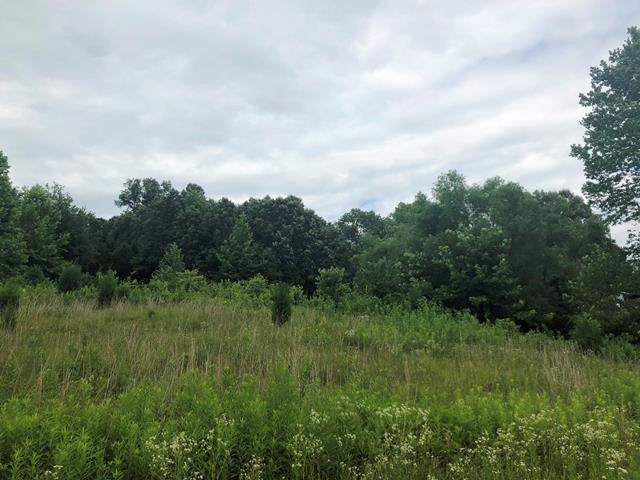 185 Tooth Acres Lane, Hartford, KY 42327 (MLS #74115) :: Kelly Anne Harris Team