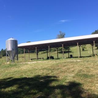 2767 Taffy Road, Whitesville, KY 42378 (MLS #74909) :: Farmer's House Real Estate, LLC