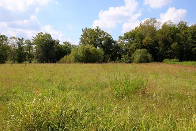 4999 Jack Hinton Rd, Philpot, KY 42366 (MLS #75199) :: Farmer's House Real Estate, LLC