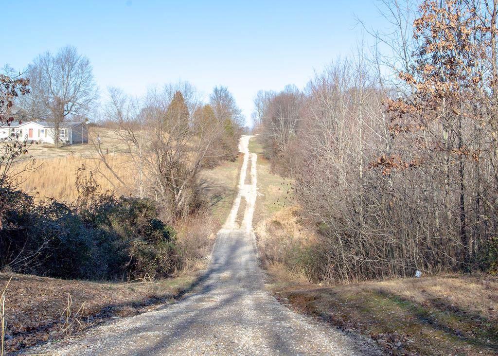0000 Knottsville Mt. Zion Rd - Photo 1