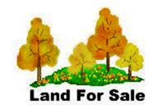 1343 Paul Baker Road, Fordsville, KY 42343 (MLS #80653) :: The Harris Jarboe Group