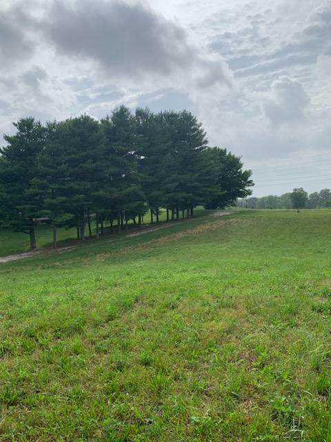 7428 Saur Road, Maceo, KY 42355 (MLS #79160) :: The Harris Jarboe Group