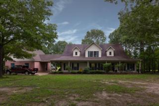 101 Cr 462, OXFORD, MS 38863 (MLS #138256) :: John Welty Realty