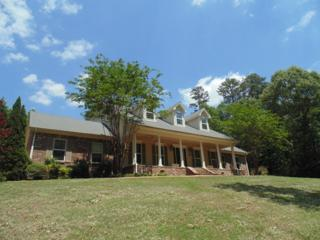 3728 Lyles Drive, OXFORD, MS 38655 (MLS #138275) :: John Welty Realty