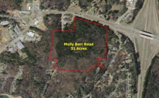 00 Molly Barr Road / Hwy 30, OXFORD, MS 38655 (MLS #138298) :: John Welty Realty