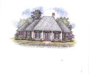 121 Downing, OXFORD, MS 38655 (MLS #138342) :: John Welty Realty