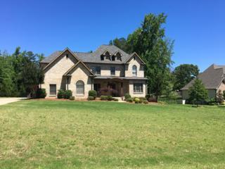12004 Water Ridge Drive, OXFORD, MS 38655 (MLS #138345) :: John Welty Realty