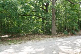 tbd Martin Drive, SARDIS, MS 38666 (MLS #138358) :: John Welty Realty