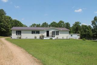 918 Cr 94, WATER VALLEY, MS 38965 (MLS #138284) :: John Welty Realty