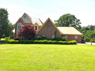172 Chickasaw, POPE, MS 38658 (MLS #138303) :: John Welty Realty