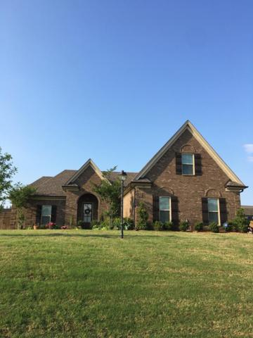 109 London Cove, BATESVILLE, MS 38606 (MLS #140546) :: John Welty Realty