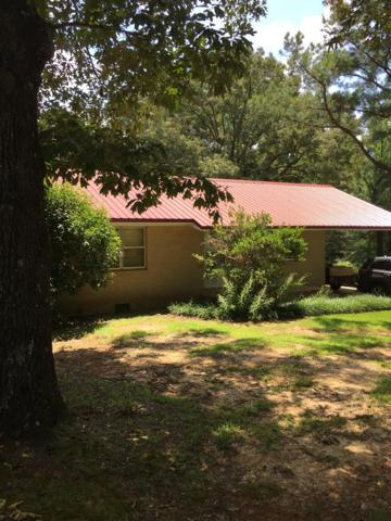 10010 Hwy 51, COURTLAND, MS 38620 (MLS #140970) :: John Welty Realty