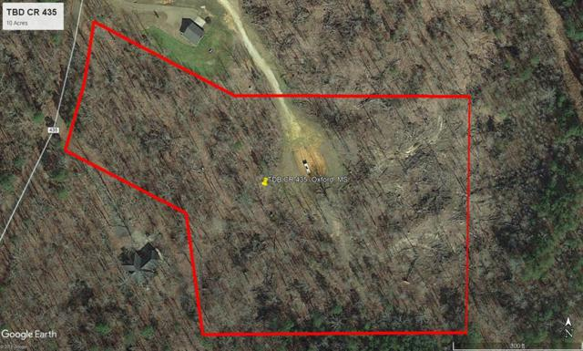 TBD Cr 435, OXFORD, MS 38655 (MLS #141461) :: John Welty Realty