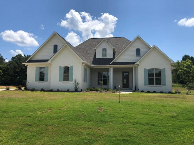 117 Downing, OXFORD, MS 38655 (MLS #141571) :: John Welty Realty