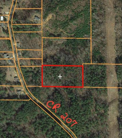 000 Cr 207, OXFORD, MS 38655 (MLS #141665) :: John Welty Realty