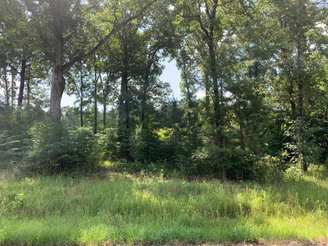 338 Winner's Circle, OXFORD, MS 38655 (MLS #143539) :: Oxford Property Group