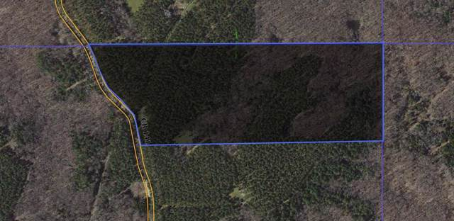 00 Cr 141, OXFORD, MS 38655 (MLS #144127) :: Oxford Property Group