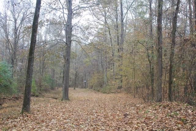 0 Stage Road-Coldwater, OTHER, MS 38618 (MLS #144440) :: John Welty Realty