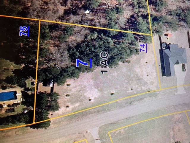 148 Lakes Dr South, OXFORD, MS 38655 (MLS #144807) :: John Welty Realty