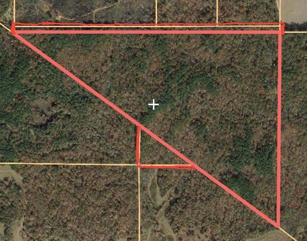 000 Cr 62, OAKLAND, MS 38948 (MLS #144818) :: John Welty Realty