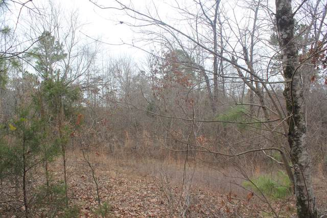 1 County Road 204, ABBEVILLE, MS 38601 (MLS #144921) :: Oxford Property Group