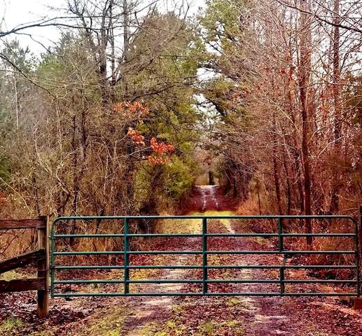 521 Cr 442, OXFORD, MS 38655 (MLS #145061) :: John Welty Realty