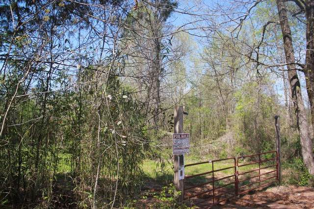 1519 County Road 14, MYRTLE, MS 38650 (MLS #145419) :: Oxford Property Group
