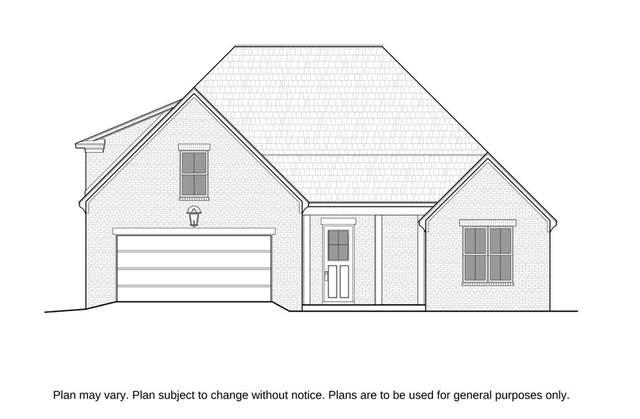 805 Oak Grove Lane, OXFORD, MS 38655 (MLS #145536) :: Oxford Property Group