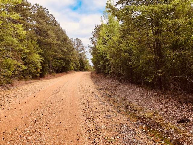0 Cr 346, Calhoun City, MS 38916 (MLS #145554) :: John Welty Realty