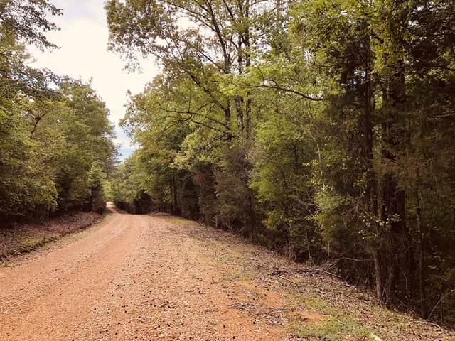 00 Cr 346, Calhoun City, MS 38916 (MLS #145555) :: John Welty Realty