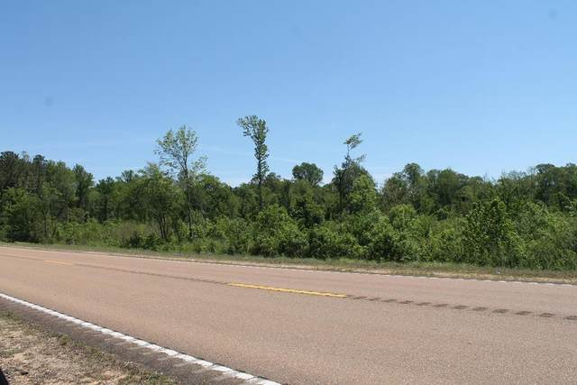 000 Hwy 7, COFFEEVILLE, MS 38922 (MLS #145574) :: John Welty Realty
