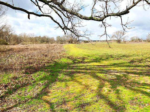 00 Cr 215, OXFORD, MS 38655 (MLS #145632) :: Oxford Property Group