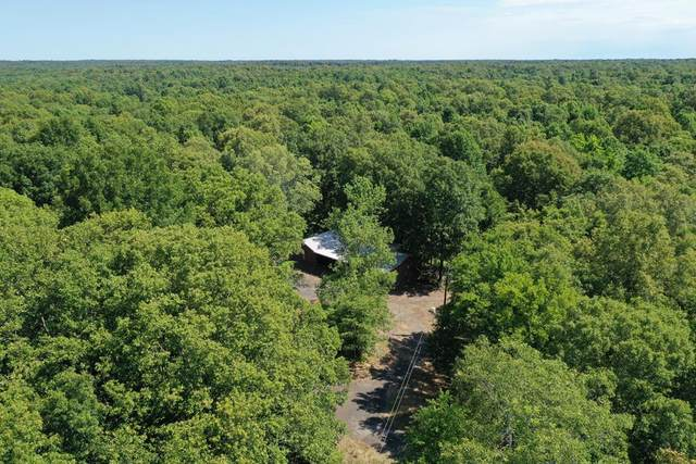 1967 Old Crenshaw Rd, CRENSHAW, MS 38621 (MLS #145913) :: John Welty Realty