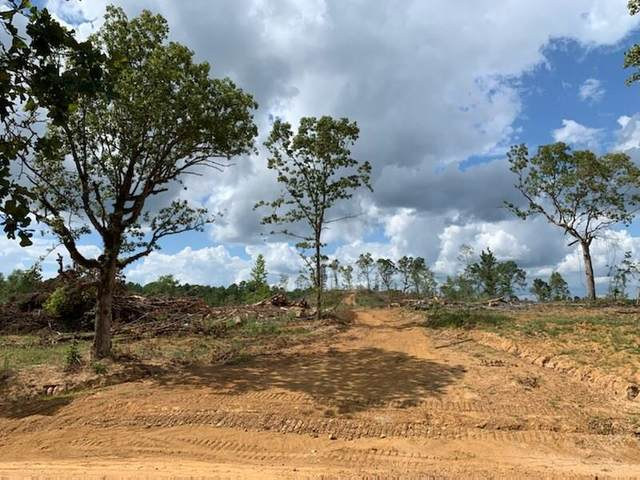 40ac Cr 103, WATER VALLEY, MS 38965 (MLS #146467) :: John Welty Realty