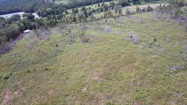 325 Beaver Dam Rd., COFFEEVILLE, MS 38922 (MLS #146649) :: John Welty Realty