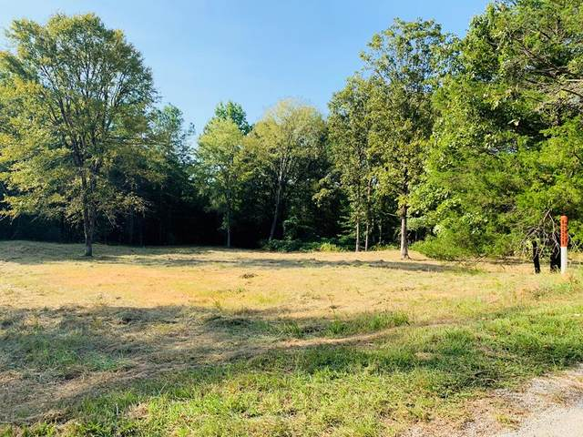 38 Cr 351, TAYLOR, MS 38673 (MLS #146675) :: Oxford Property Group