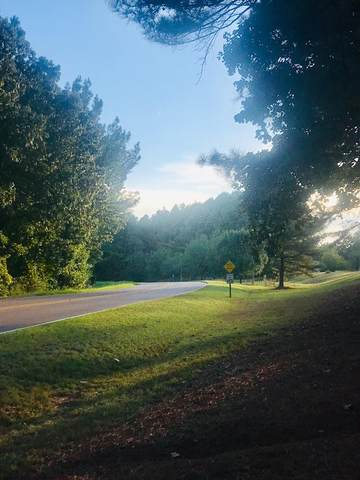 TBD Old Taylor Road (Cr 303), OXFORD, MS 38655 (MLS #146787) :: Cannon Cleary McGraw