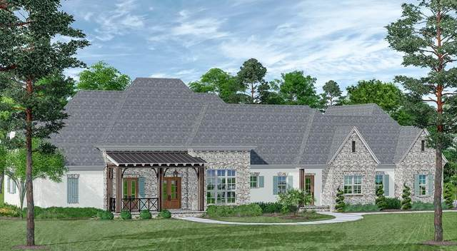 306 Winners Circle, OXFORD, MS 38655 (MLS #146834) :: Cannon Cleary McGraw