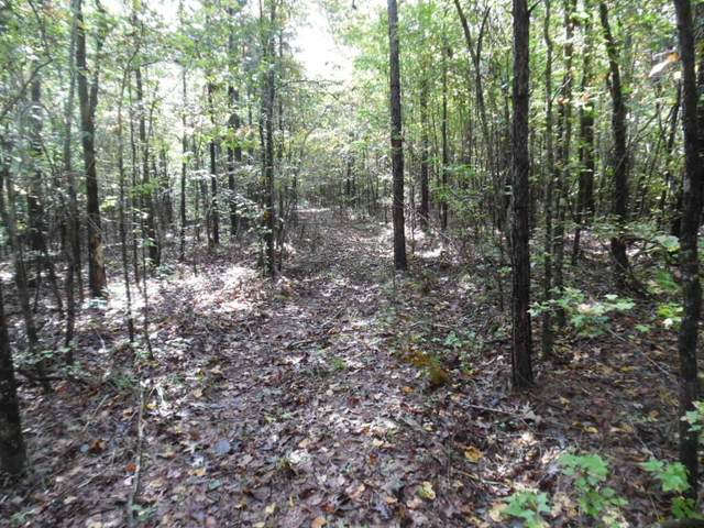 106 Cr 427, OXFORD, MS 38655 (MLS #146896) :: Oxford Property Group