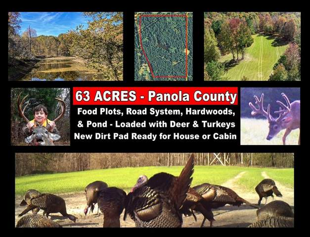 xx Old Panola Road, BATESVILLE, MS 38606 (MLS #146999) :: Cannon Cleary McGraw