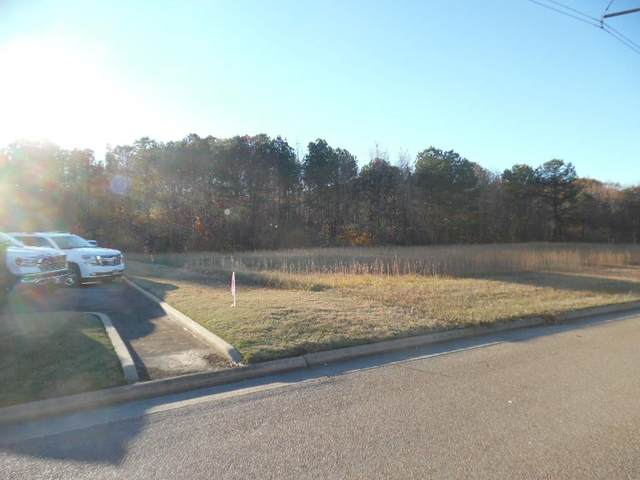 TBD Broom Ridge Road, BATESVILLE, MS 38606 (MLS #147320) :: Cannon Cleary McGraw