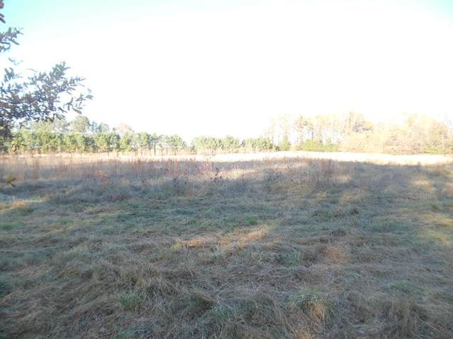 00 Keating Road, BATESVILLE, MS 38606 (MLS #147377) :: Cannon Cleary McGraw
