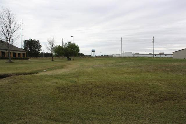 TBD Mcmahan Drive, BATESVILLE, MS 38606 (MLS #147840) :: Oxford Property Group