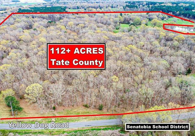 3407 Yellow Dog Rd - Senatobia - Tate Co, OTHER, MS 38668 (MLS #147928) :: Oxford Property Group