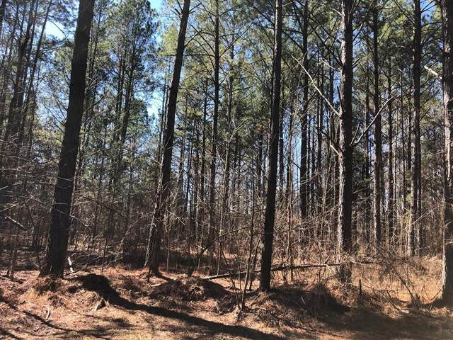 2 County Road 326, Big Creek, MS 38914 (MLS #147965) :: John Welty Realty