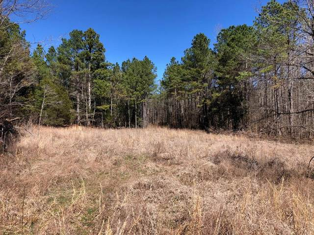 1 County Road 325, Big Creek, MS 38914 (MLS #147968) :: Nix-Tann and Associates