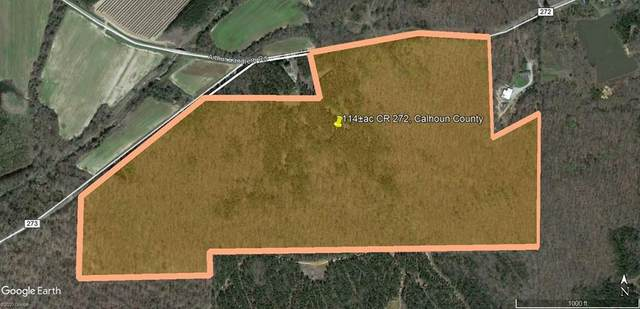 114ac Cr 272, WATER VALLEY, MS 38965 (MLS #148019) :: John Welty Realty
