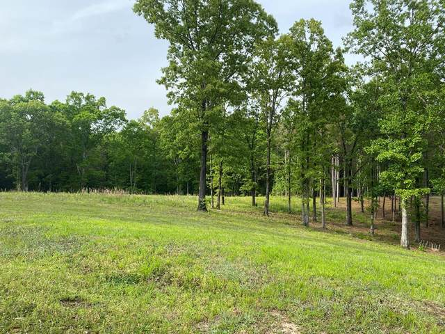 101 Leatherwood Road, OXFORD, MS 38655 (MLS #148052) :: Nix-Tann and Associates