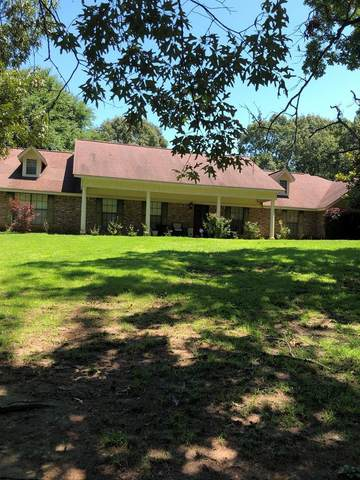201 Rachelle, OXFORD, MS 38655 (MLS #148400) :: Cannon Cleary McGraw
