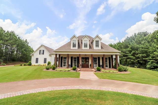 61 Cr 178, OXFORD, MS 38655 (MLS #148499) :: Oxford Property Group